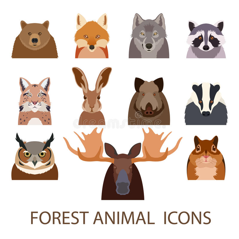 Forest animal flat icons. Vector image of set of forest animal flat icons stock illustration