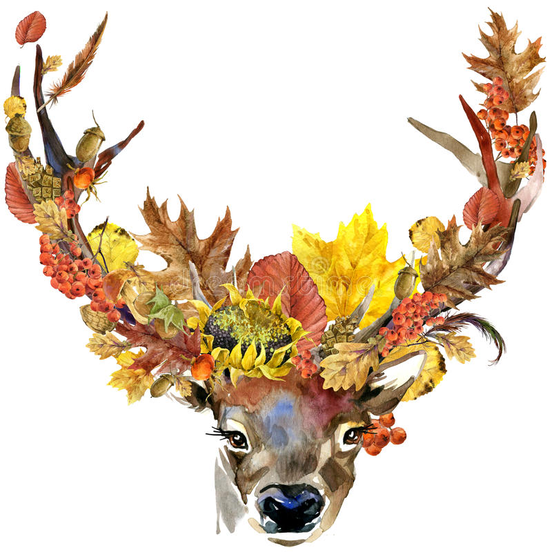 Forest animal roe deer Autumn nature colorful leaves background , fruit, berries, mushrooms, yellow leaves, rose hips on black bac stock illustration
