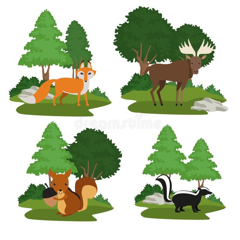 Forest animals cartoon vector illustration