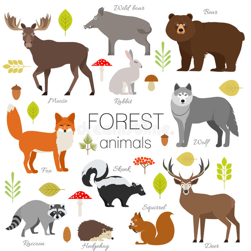 Forest animals isolated vector set. vector illustration
