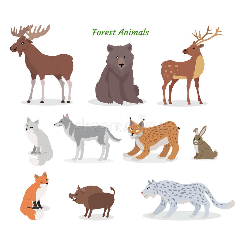 Forest Animals Set. Wildlife Characters. Vector stock illustration