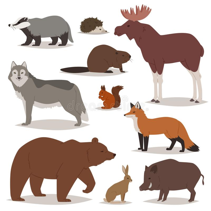Forest animals vector cartoon animalistic characters bear fox and wild wolf or boar in woodland illustration set of elk stock illustration