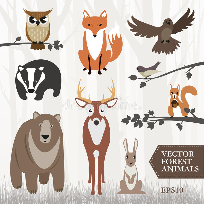 Forest animals. Vector image of forest animals. Showing a Bear a deer a bird a badger a fox a rabbit an owl a red squirrel and a wood pigeon