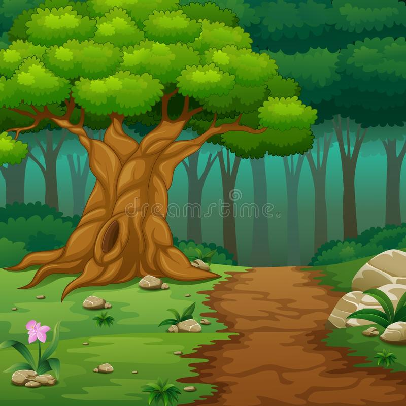 Forest background with dirt road stock illustration