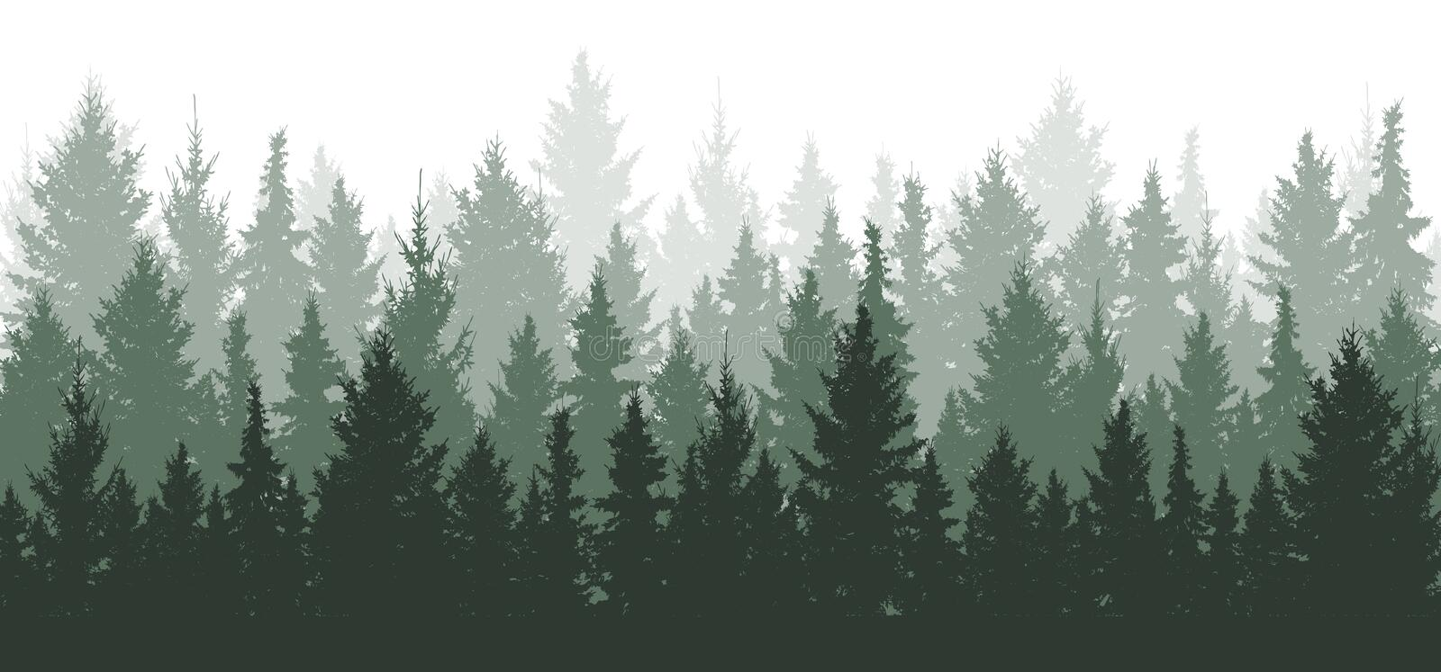 Forest background, nature, landscape. Evergreen coniferous trees. Pine and spruce and christmas tree. Silhouette vector vector illustration