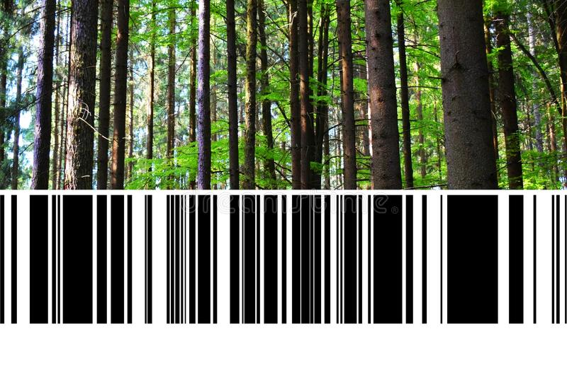 Forest with Barcode royalty free stock photography