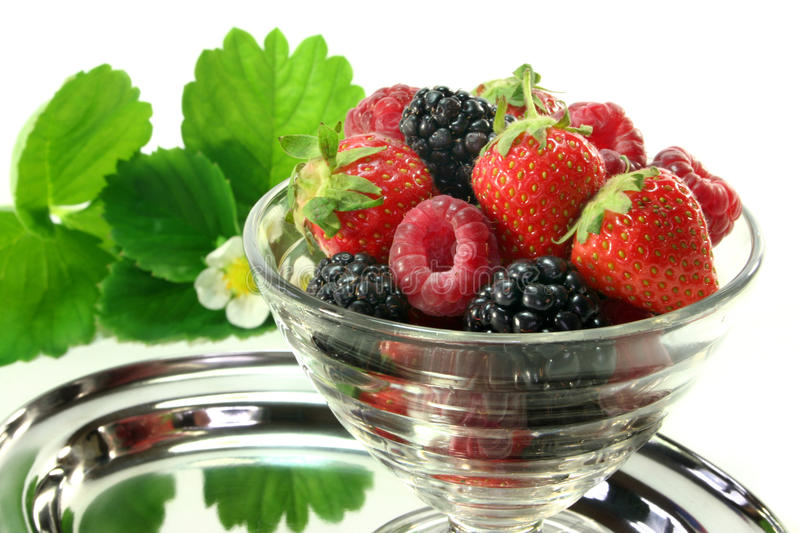 Forest berries. Fresh berries in a small bowl stock images