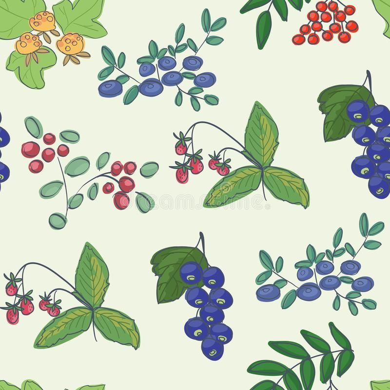 Forest berries - background stock photos