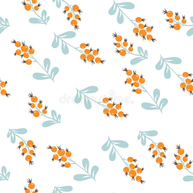 Forest berries. seamless pattern royalty free illustration