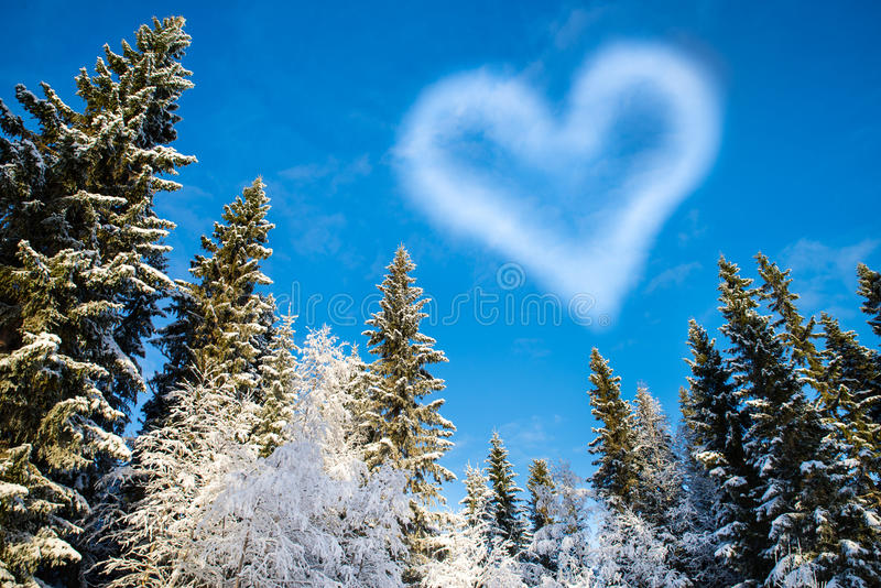 Forest with blue sky and a cloud shaped heart for Valentine's Da royalty free stock photos