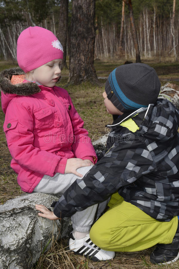 In the forest, the boy asks for forgiveness from the girl. In the spring forest small boy apologizing to the little girl who is sitting on a log and looking at royalty free stock image