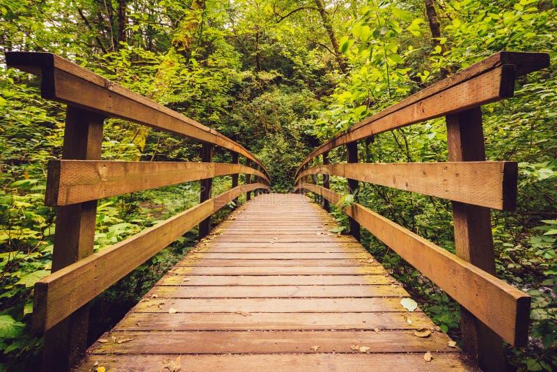 Forest Bridge photographie stock