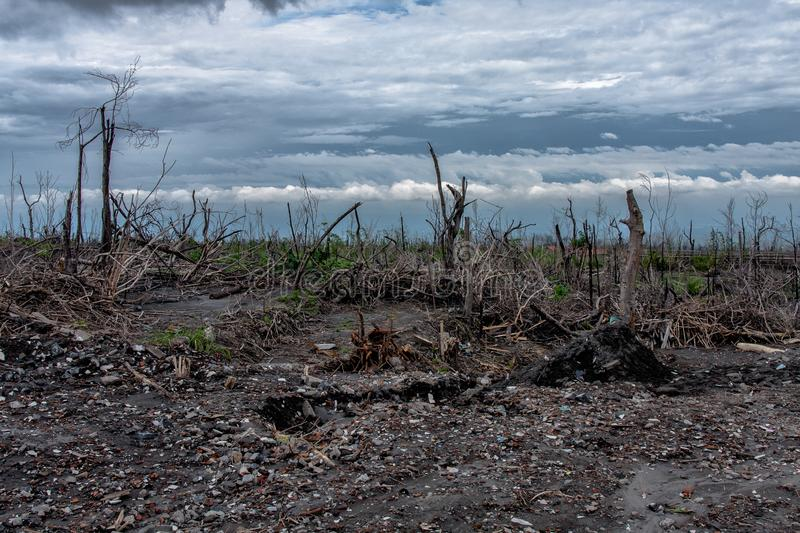 The forest burnt by the Mount Merapi eruption, Indonesia. Mount Merapi, Gunung Merapi, is an active stratovolcano located on the border between Central Java and royalty free stock photos