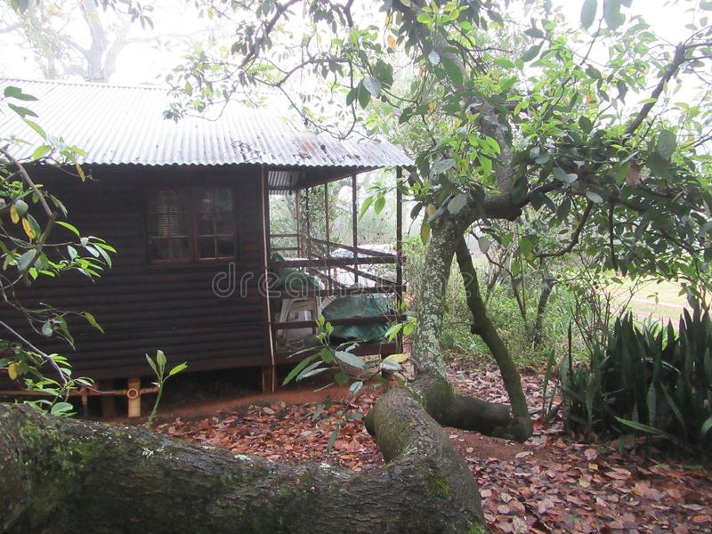 Forest Cabin. Hideaway in the Lowveld SouthAfrica a little cabin just right for two royalty free stock photography