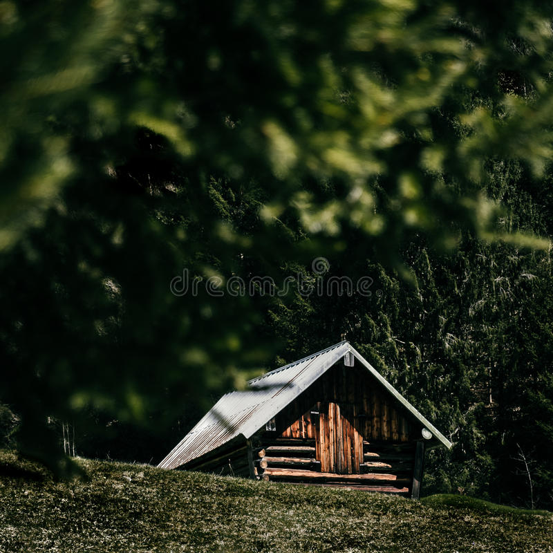 Forest Cabin Woods royalty-vrije stock afbeelding