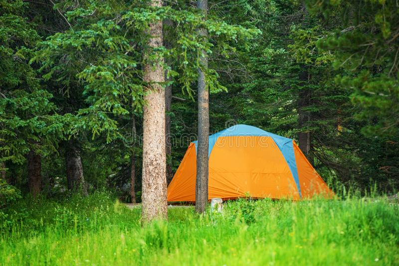 Forest Campground Tent fotografia de stock royalty free