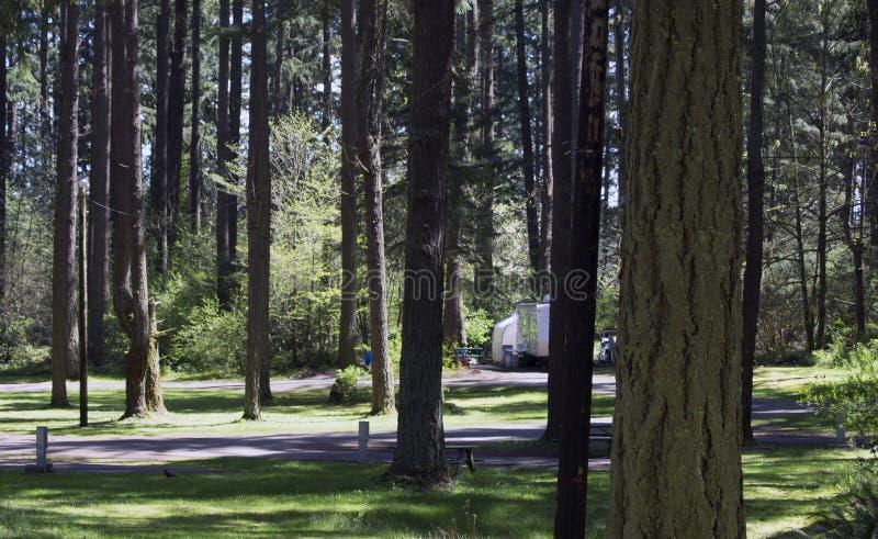 Forest Campgrounds imagem de stock