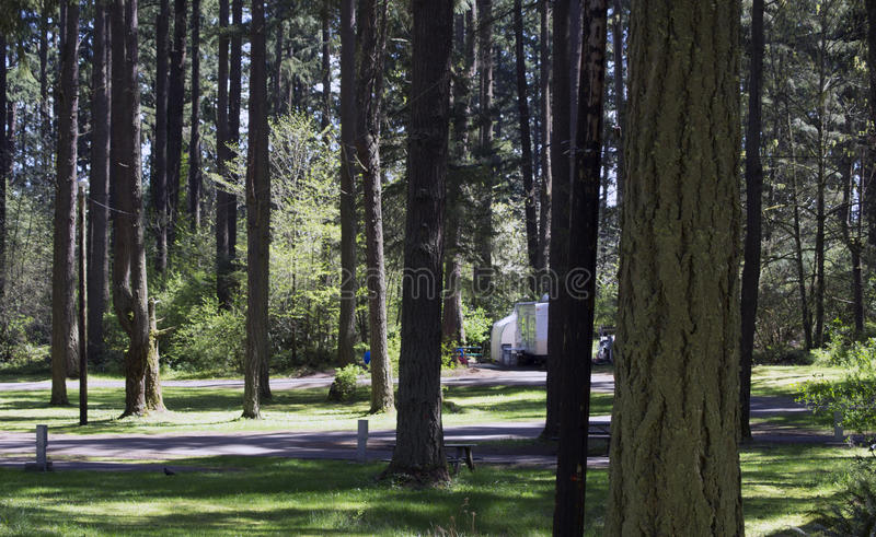 Download Forest Campgrounds stock image. Image of stay, airfield - 42891771