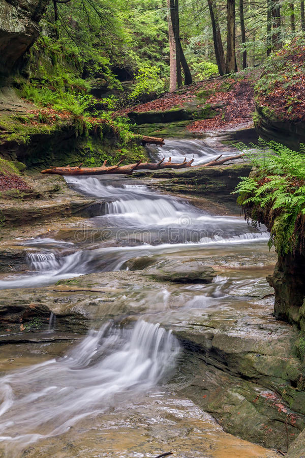 Forest Cascade. Water cascades down a sandstone stream bed in the forest of Ohio's Hocking Hills State Park in the area of Old Man's Cave royalty free stock photography