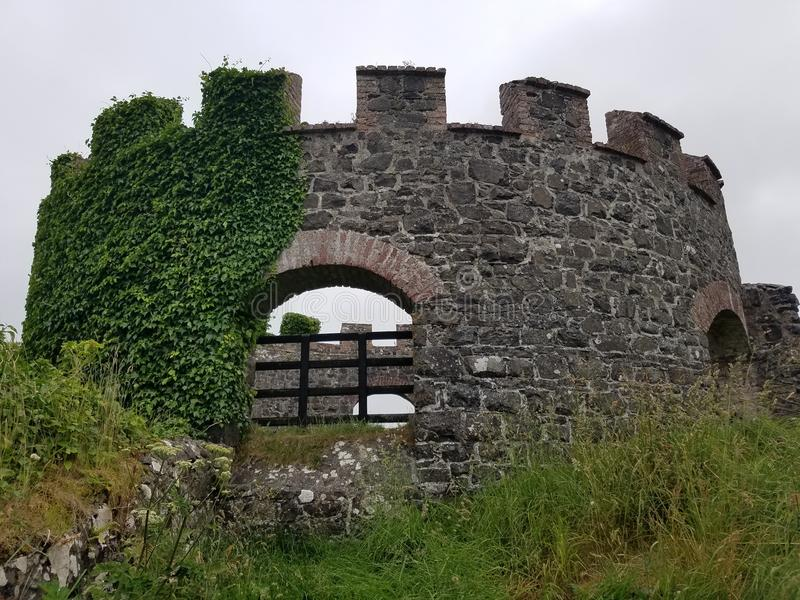 Forest Castle ruins royalty free stock photo