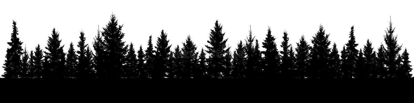Forest of Christmas fir trees silhouette. Coniferous spruce panorama. Park of evergreen wood. vector illustration