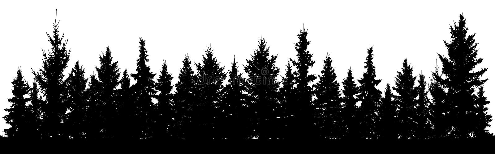 Forest of Christmas fir trees silhouette. Coniferous spruce. Park of evergreen wood. Vector on white background. Forest of Christmas fir trees silhouette