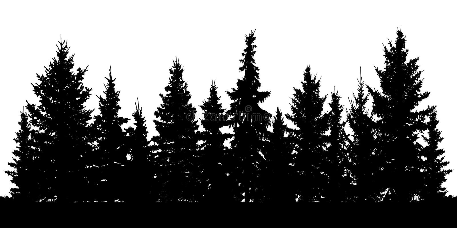 Forest of Christmas fir trees silhouette. Coniferous spruce. vector illustration