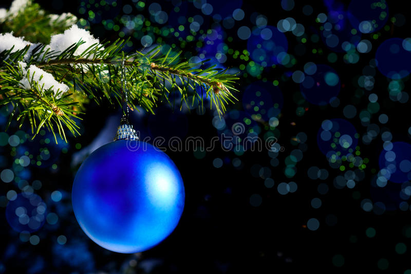 Forest Christmas tree branch with blue ornament stock image