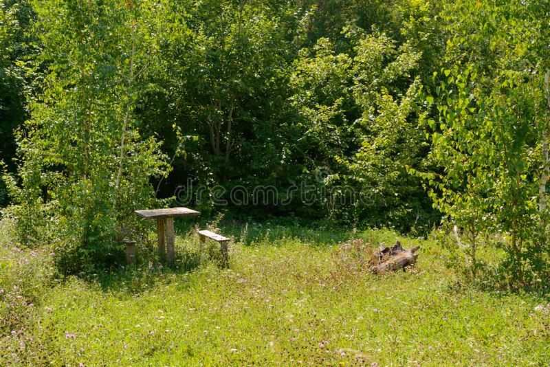 Forest clearing with an old wooden table and benches royalty free stock images