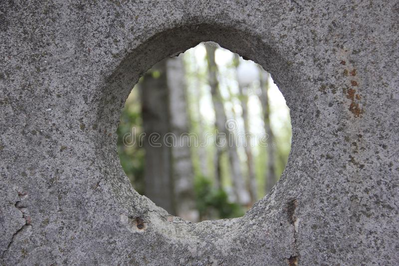 Forest through the concrete window stock images