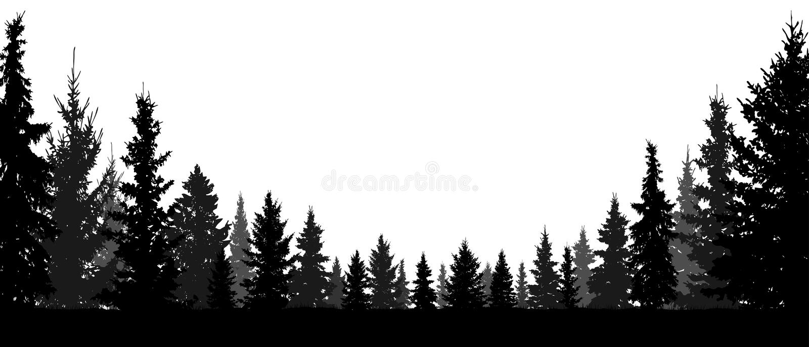 Forest, coniferous trees, silhouette vector background. Forest and coniferous trees, silhouette vector background. Tree fir and christmas tree and spruce, pine vector illustration