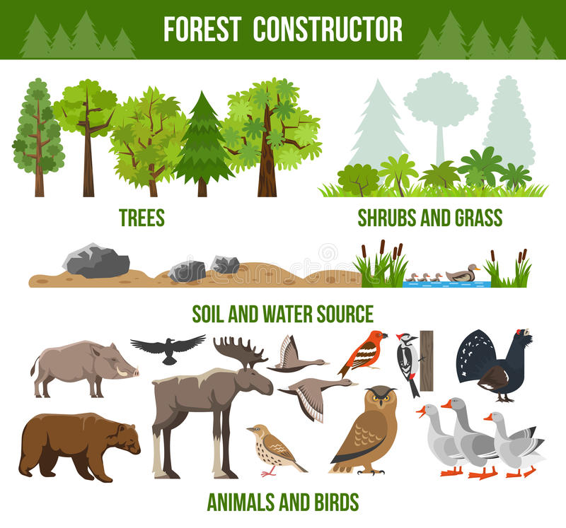 Forest Constructor Poster royaltyfri illustrationer