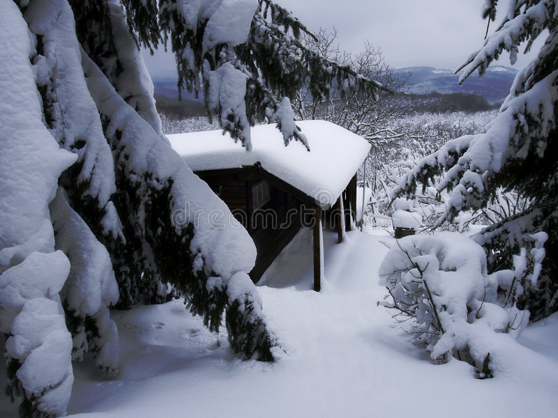 Forest cottage in a winter royalty free stock photos