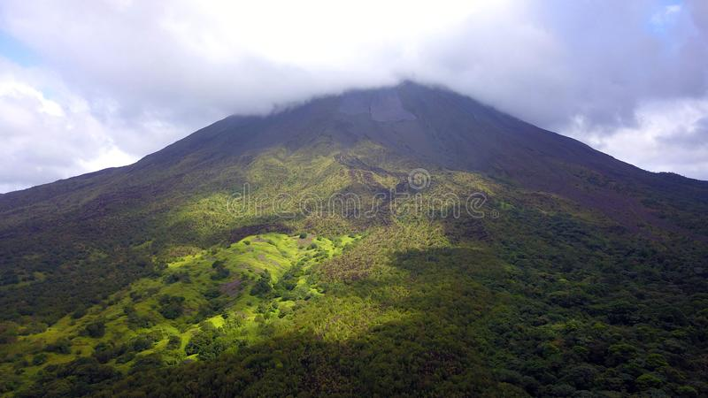 Forest Covered Mountain stock photos
