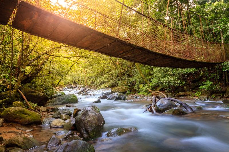 Forest creek in Rincon de la Vieja National Park in Costa Rica. Hanging bridge over a creek in Rincon de la Vieja National Park in Costa Rica royalty free stock images