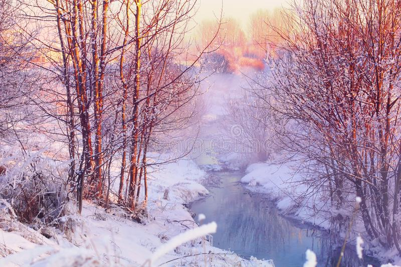 Forest creek in winter forest. Winter landscape with snow covered forest and flowing stream at sunrise stock images