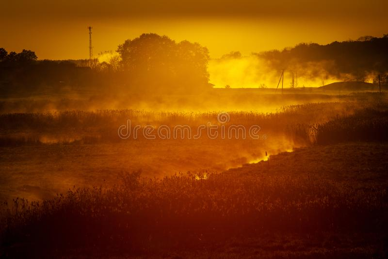 Fog glowing during the sunrise stock photos