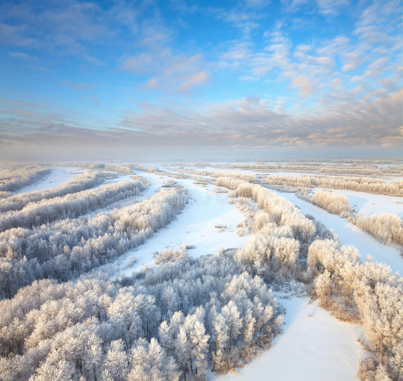 Free Forest During Cold Winter Day Stock Photos - 28694333