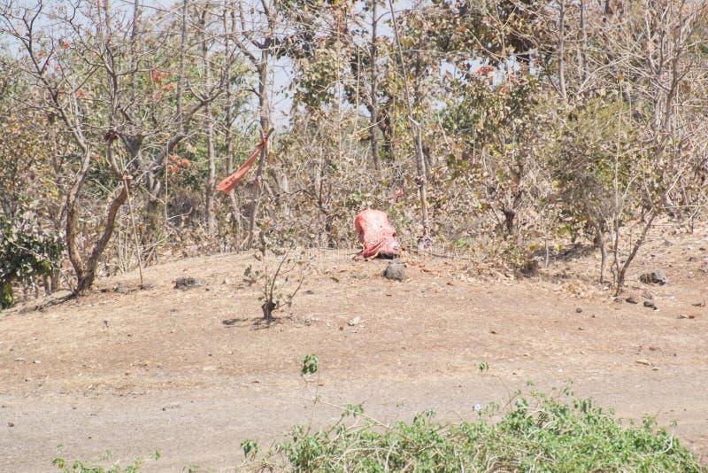 Forest Encroachment Indore Madhya Pradesh fotografie stock libere da diritti