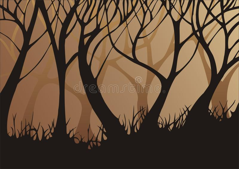 Forest In The Evening Royalty Free Stock Photos