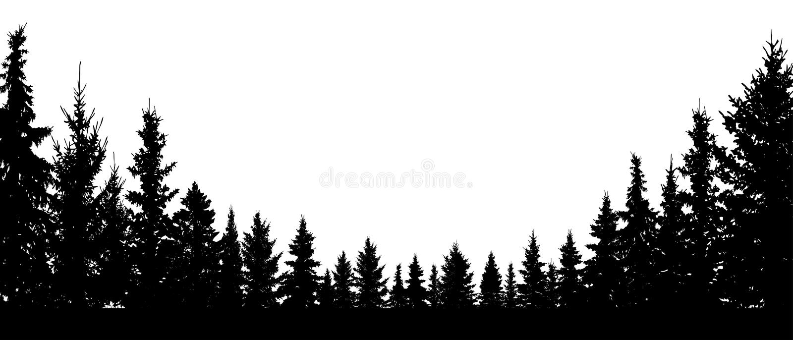 Forest evergreen, coniferous trees, silhouette vector background royalty free illustration