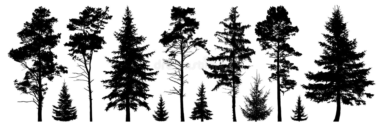 Forest evergreen trees silhouette isolated set.  vector illustration