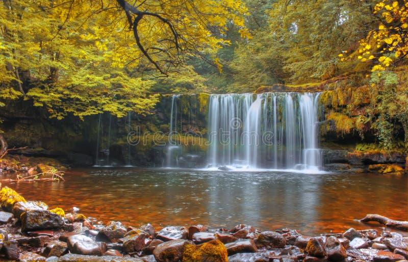 Forest Falls, het Verenigd Koninkrijk, Engeland royalty-vrije stock foto's