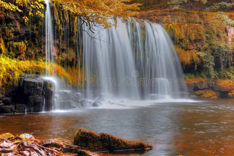 Forest Falls, het Verenigd Koninkrijk, Engeland royalty-vrije stock afbeelding