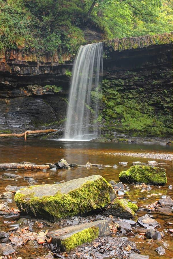Forest Falls, het Verenigd Koninkrijk, Engeland royalty-vrije stock fotografie