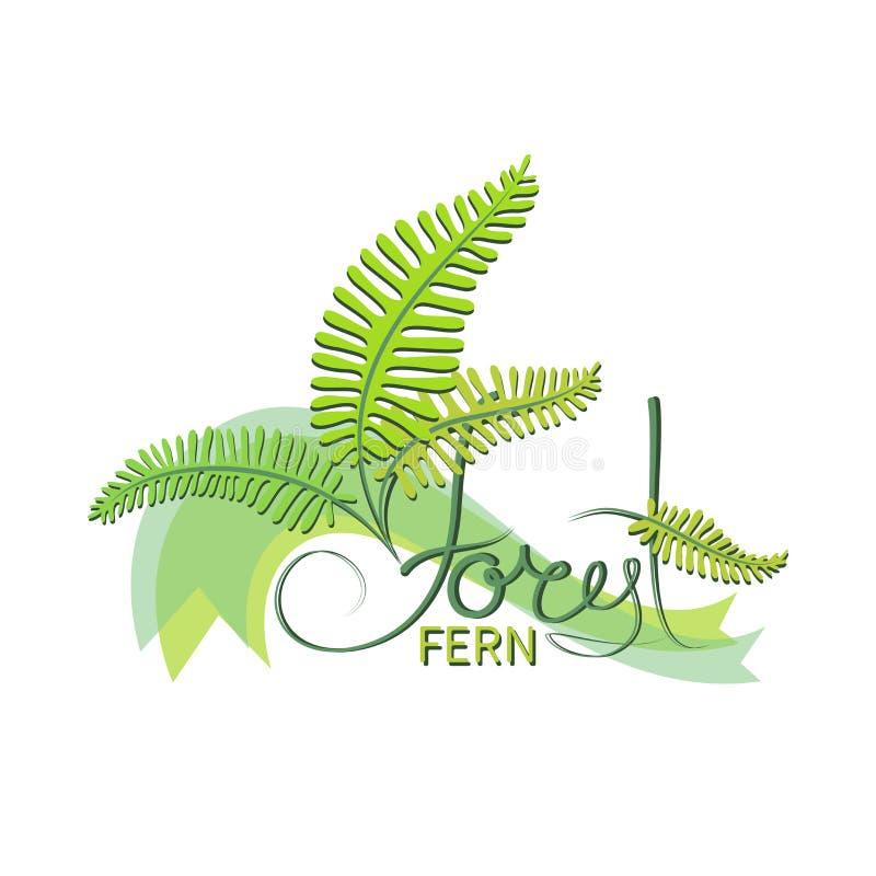 Forest fern. Emblem. stock illustration