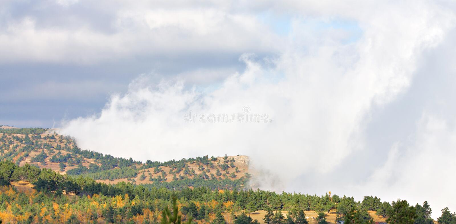 Download Forest fire stock image. Image of alarm, firemen, house - 11900447