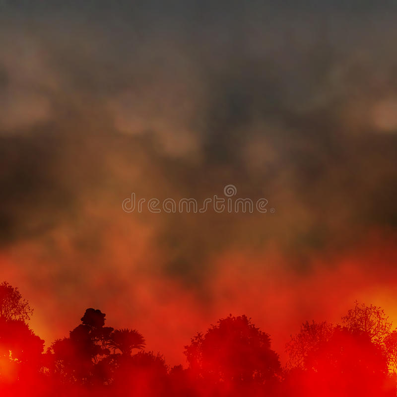 Forest fire stock illustration