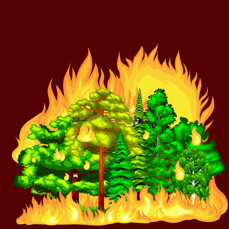 Forest Fire, brand in boslandschapsschade, de ramp van de aardecologie, hete brandende bomen, de vlam van de gevaars bosbrand met royalty-vrije illustratie