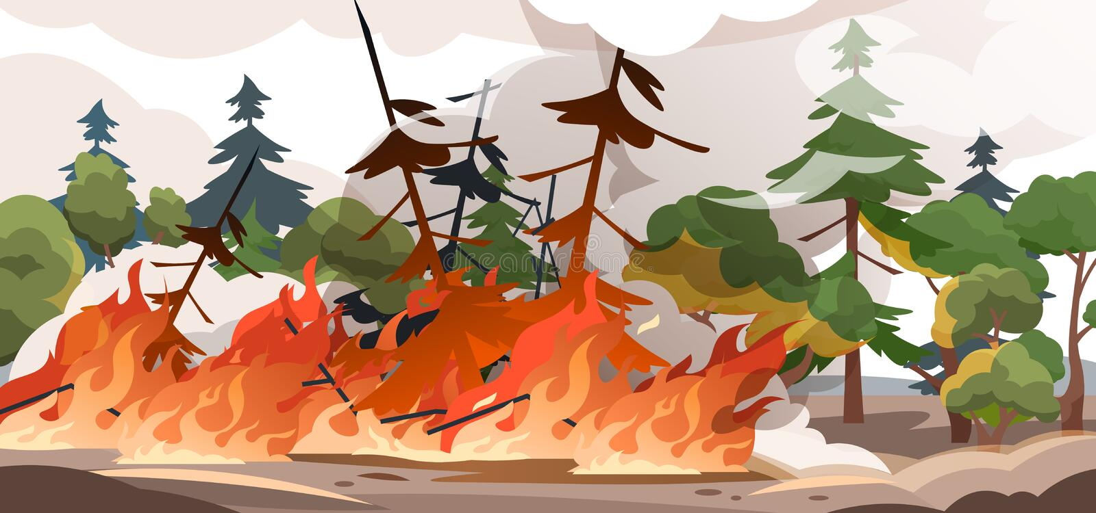Forest fire. Burning spruces and oak trees, wood plants in flame and smoke, nature disaster cartoon illustration. Vector. Poster flame in nature outdoor, save vector illustration